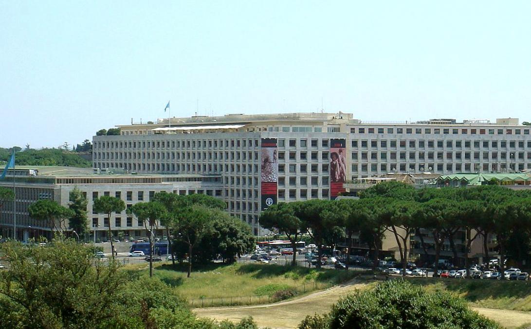FAO's headquarters in Rome