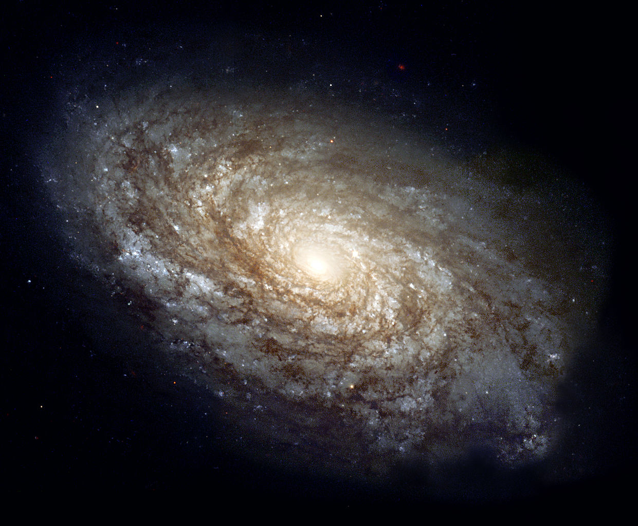 The majestic spiral galaxy NGC 4414 imaged by the Hubble Space Telescope in 1995
