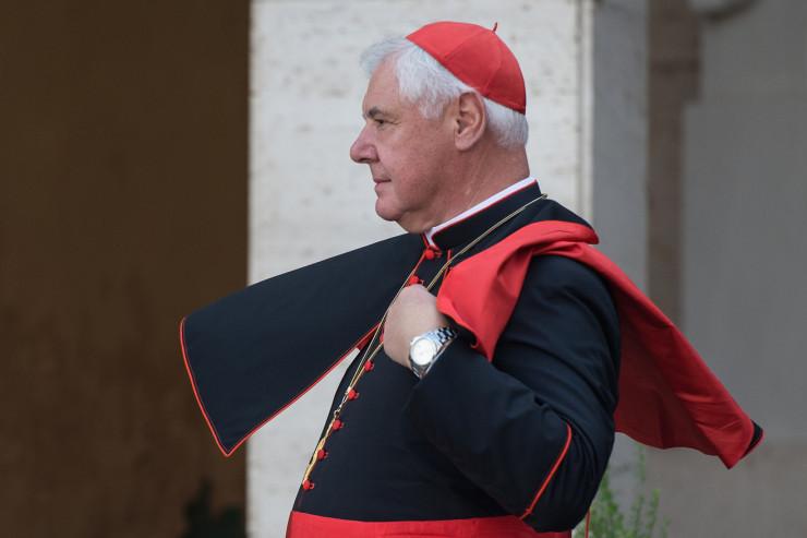 cardinal_muller-740x493