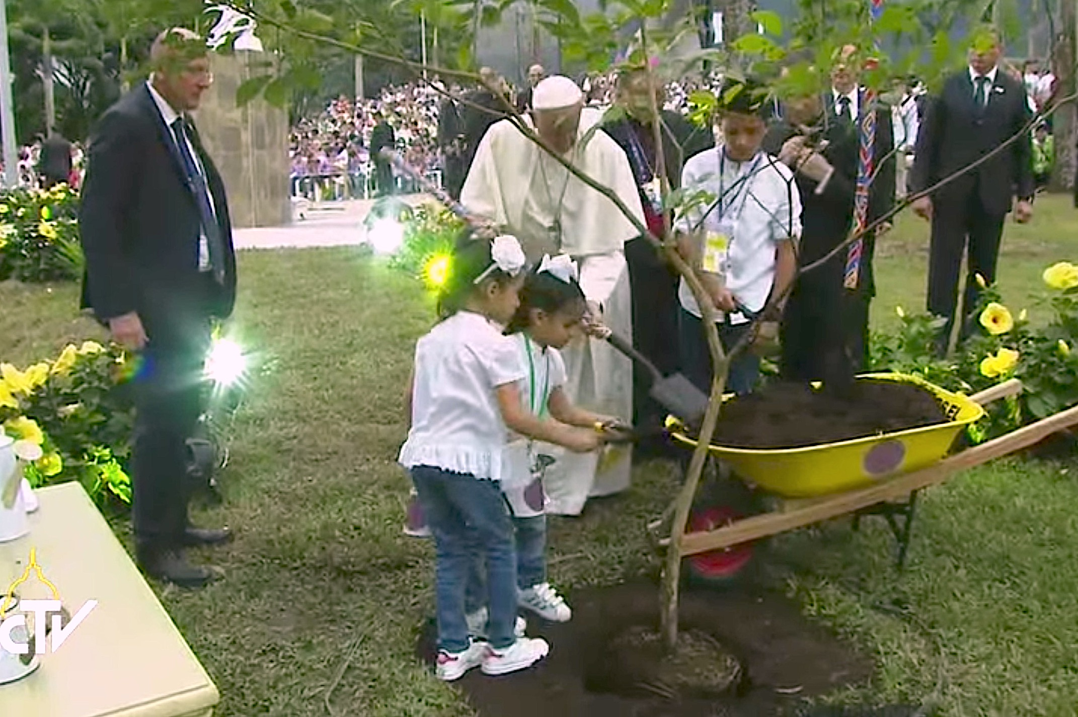 Pope plants tree