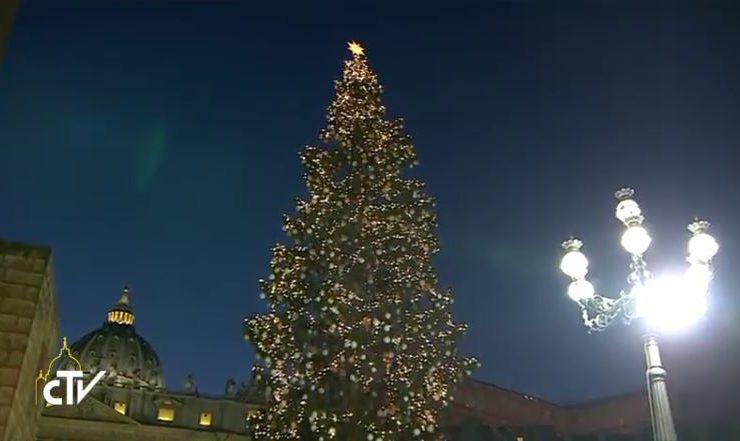 2016 Tree CTV Capture